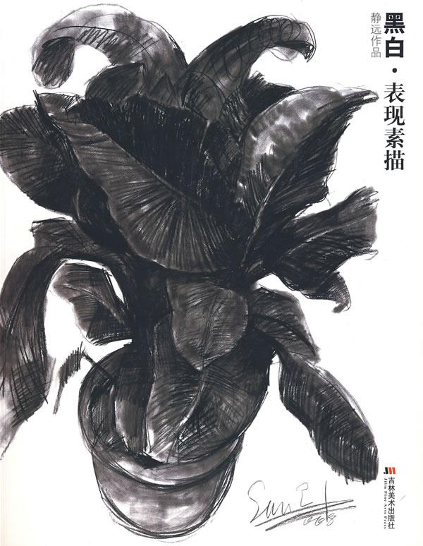 静远作品 黑白 表现素描图片图片