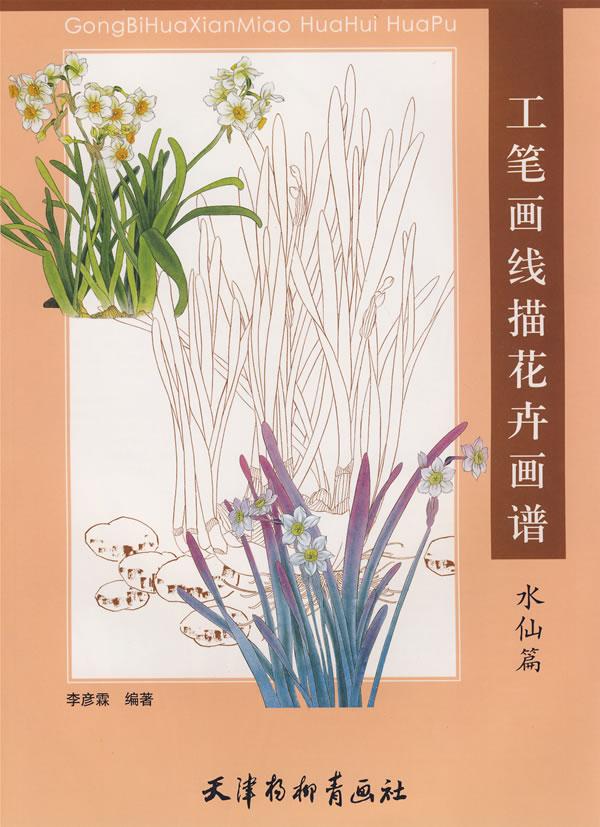 工笔画线描花卉画谱 水仙篇
