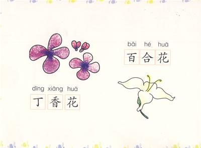 幼儿简笔画:植物风景