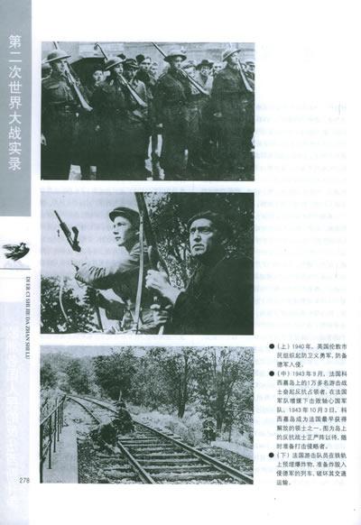 第二次世界大战实录/沈永兴