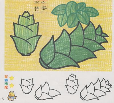 植物篇/学画画