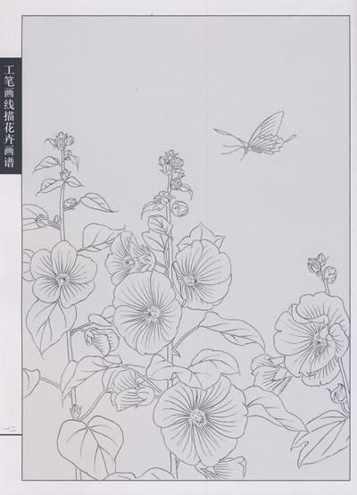 工笔画线描花卉画谱?蜀葵篇