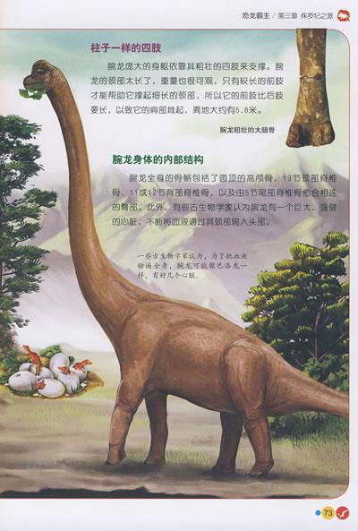 绝对正版★恐龙霸主:中国儿童动植物百科